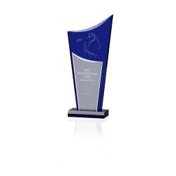 Indigo Drive Award