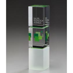 Triple Cube Award