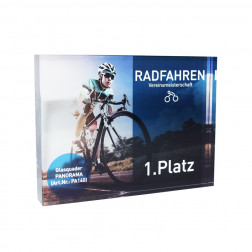 Glas-Trophäe Panorama Award