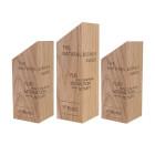Holz Cubix Award Referenz The Natural Business Award im 3er Set